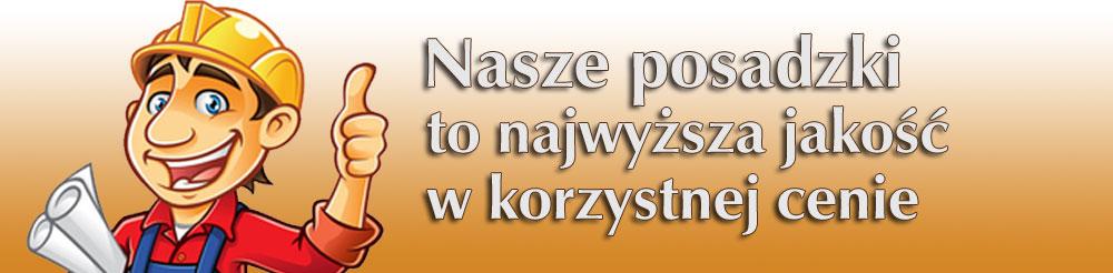 Nehring Budownictwo oferuje posadzki Olsztyn i okolice